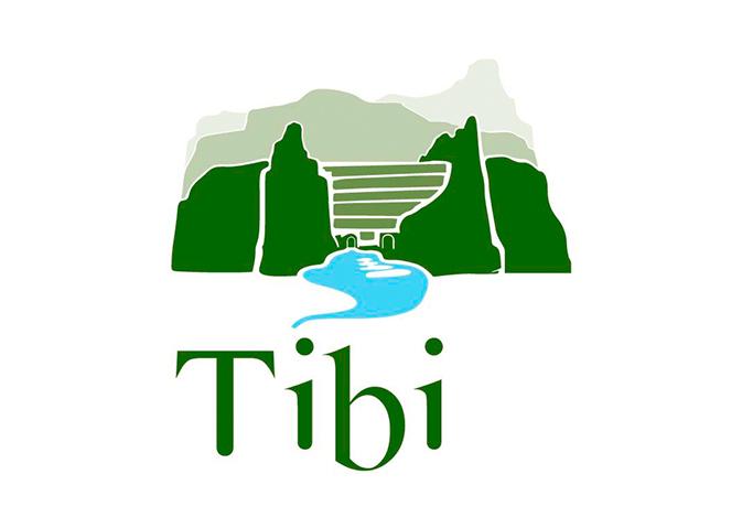 ayuntamiento tibi logo